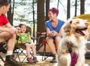 Friendly Accommodation Around Australia Your Kids Will Love Too!