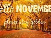 Hello November Gluten Free Chef Returns!