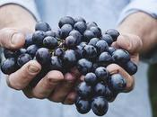 What Organic Food Health Benefits Eating
