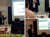 Around World with Codorniu Raventos Selections