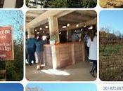 Holistic Farm Winery Montgomery County Maryland: Rocklands