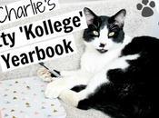 Charlie's Kitty 'Kollege' Yearbook