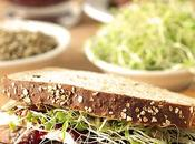 Turkey, Cranberry Cream Cheese Sandwich with Sprouts Sunflower Seeds