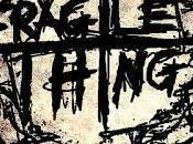 Fragile Things Broken