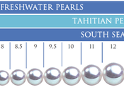 Your Pearl Size Help Guide