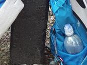 Lesson 1488 Border Hampshire Walk 16-3 (the End.)