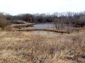 General Mills Research Nature Area... Example Minnesota Named Country's 'Best Trails State'