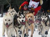 Iditarod Trail Sled Race 2012