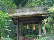 Jungle Trekking Hills Chiang