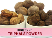 Triphala Detoxification Rejuvenation-An Ayurvedic Formula