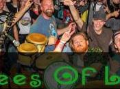 Sanford Music Festival Artist Spotlight Trees Life