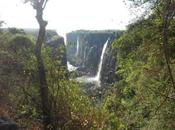 Victoria Falls Waterfall Africa That Water
