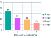 Mesothelioma Prognosis Life Expectancy