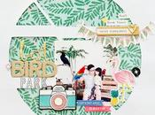 Crate Paper Design Team Bird Park