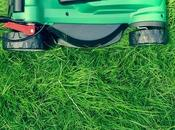 Spring Way: Start Prepping Your Lawn Heat