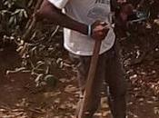 Armed with Smartphones, Cameroon Forest Defenders Take Illegal Loggers