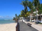 Pipa Esential Tourist Destination Brazil