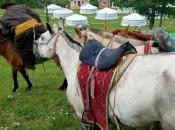 Mongolia, Land Horse People