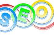 Guidelines Basic Optimization Your Website: Expert