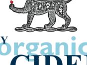 Dunkertons Organic Cider