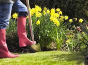 Sheffield Tops List Gardening Hotspots