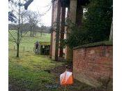 Chillington Hall Orienteering Planning