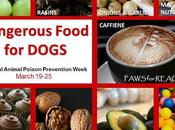 #Dangerous #Foods #Dogs #NationalAnimalPoisonPreventionWeek #March 19-25