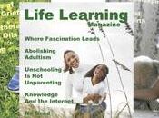 FREEBIE: Natural Child/Natural Life/Life Learning Magazines (ALL)