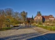 Sunny Afternoon Botanical Garden Berlin