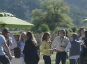 Into Yountville Live Festival