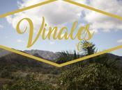 Vinales, Cuba Dame Family Trip 2017