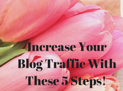 Increase Your Blog Traffic With These Steps!