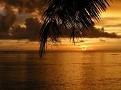 Reasons Might Want Enjoy Your Vacation Fiji Villa
