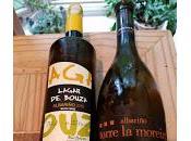 "Rías Baixas Albariño: ""The Number Alternative Chardonnay"""