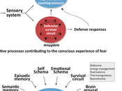 Semantics Science Fear Amygdala Doesn't 'cause' Fear.