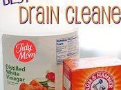 Frugal Tip: Safer, Cheaper Drain Cleaner