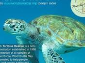 #WorldTurtleDay #May23 #AmericanTortoiseRescue