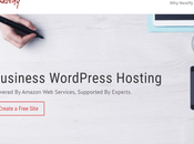 Nestify Review: Really Great WordPress Hosting? Read HERE