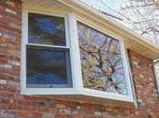 Talk: Characteristics Certified Window Contractor