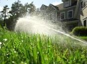 Every Drop Counts: Floridian's Guide Water Conservation