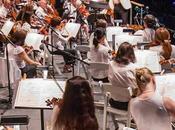 Summer Festival Preview: Concerts Parks