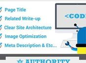 Infograph Presents Essential Aspects Search Optimization