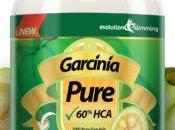 Garcinia Cambogia Reviews Pure That Works