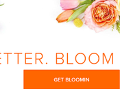 Better Florist: Flowers That Speak Volumes