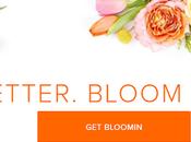 Better Florist: Flowers That Speak Volumes