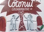 Coconut Collaborative Chocolate Dipped Snowcoconut Sticks