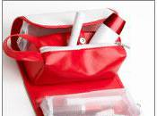 Cleaning Sanitizing Purses Makeup Bags