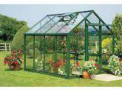 Business Ideas Greenhouse