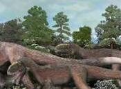 Species Large Dinosaur With Feathers Discovered China
