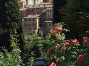 SIENA, ITALY, Guest Post Cathy Bonnell